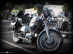 2015-11-28_PB281153.JPG_st.pete powersports Biker Bash_