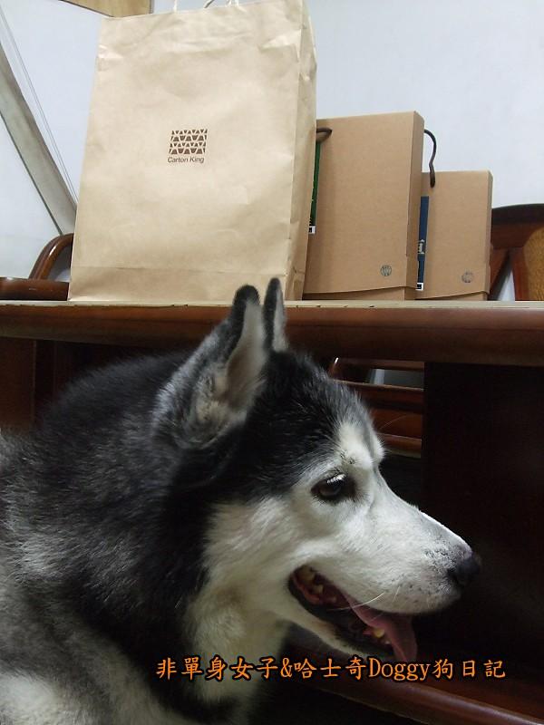 Doggy與紙箱王聖誕樹造型燈飾組02