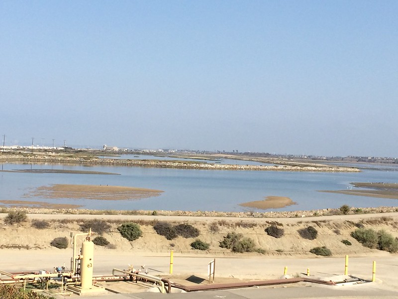 Bolsa Chica 10th Anniversary Celebration