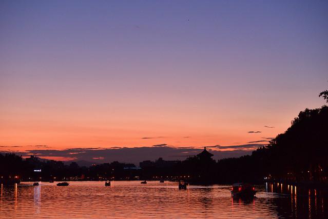機材 [沼] :レンズ沼&カメラ沼へ・・・。(32) - 残ったカメラ、来るカメラ 2016