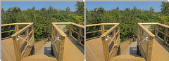 Lake Erie Bluffs Observation Deck