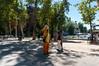 Caminho de Santiago.3414.03012012 by Guthinha