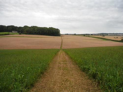 Onwards Route near Totterdale Farm