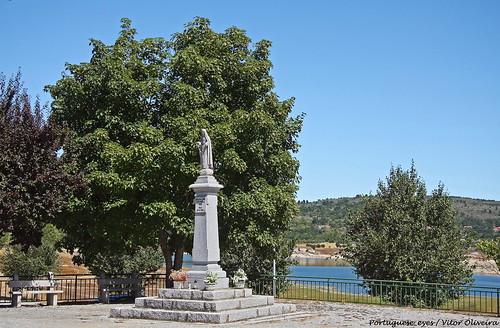 Faia - Portugal