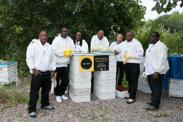men standing with beehives