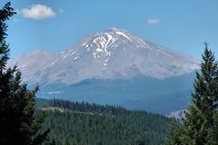 D70-0812-075 - Mount Shasta