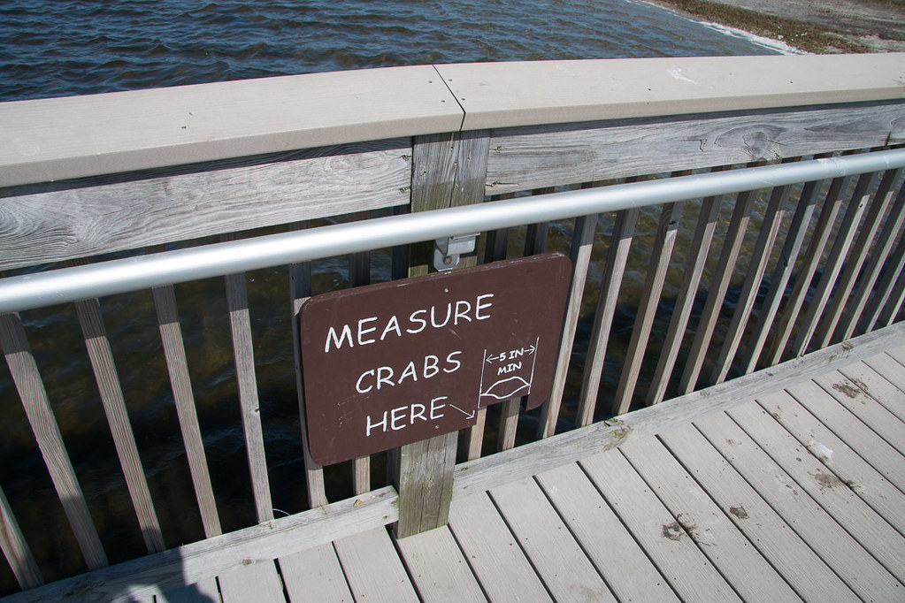 Measure crabs here | Sign at Assateague