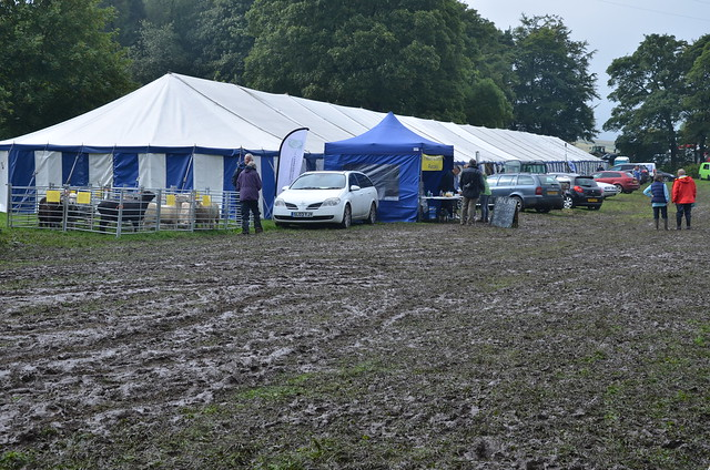 Bowes Agricultural Show Sept 15 (9)