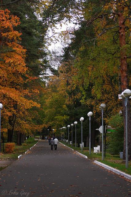 autumn_roads_11