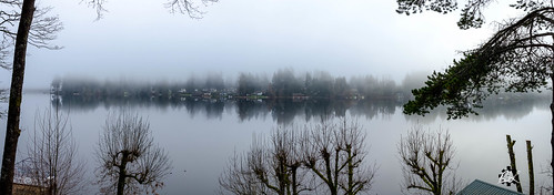 offutlake lake reflection fog family christmas christmaseve 2016 olympia washington unitedstates us