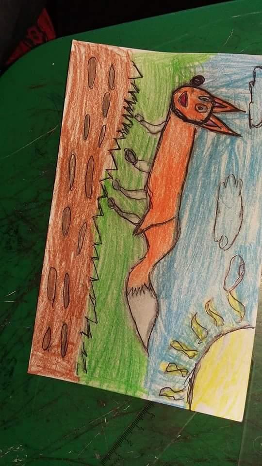 corer de zorro