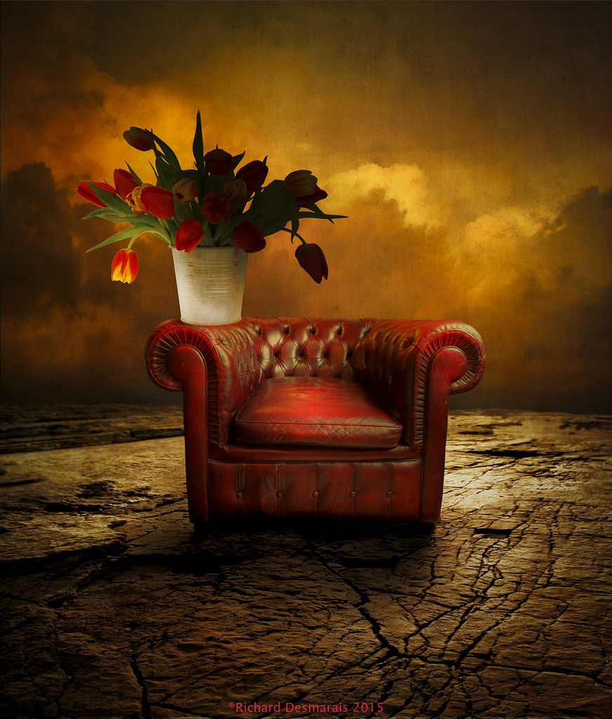 Tulips and red chair