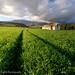 Greyton Farm Barn by Panorama Paul