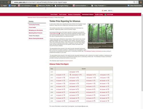 8-24 Timber Report