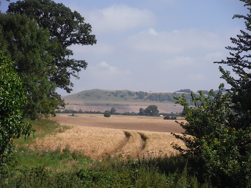 First View of Oare Hill