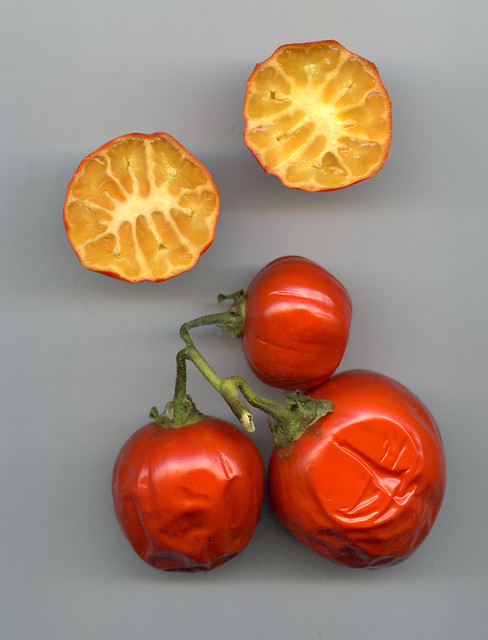 Not Tomatoes