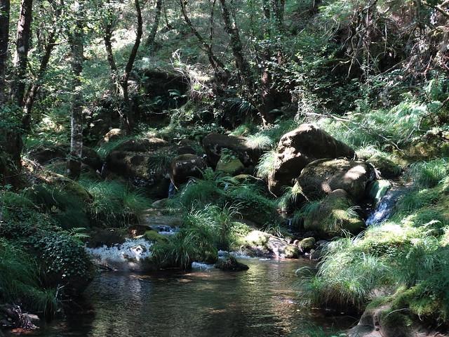 Río Seixo en Cerdedo
