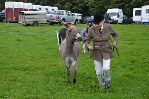 Bowes Agricultural Show Sept 15