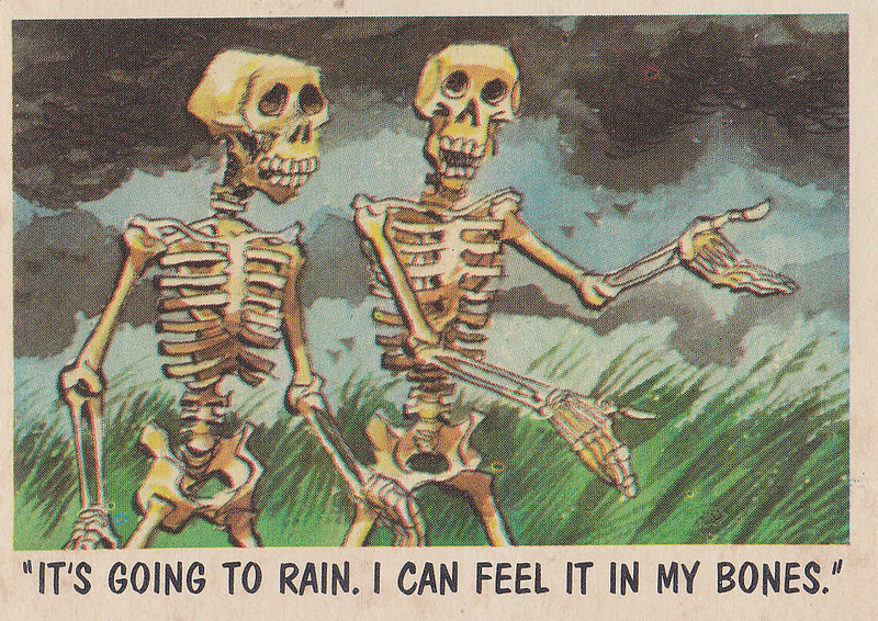 """You'll Die Laughing"" Topps trading cards 1959,  illustrated by Jack Davis (60)"