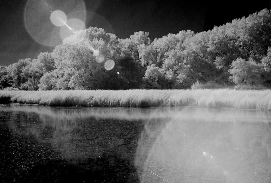 Wood Lake_11