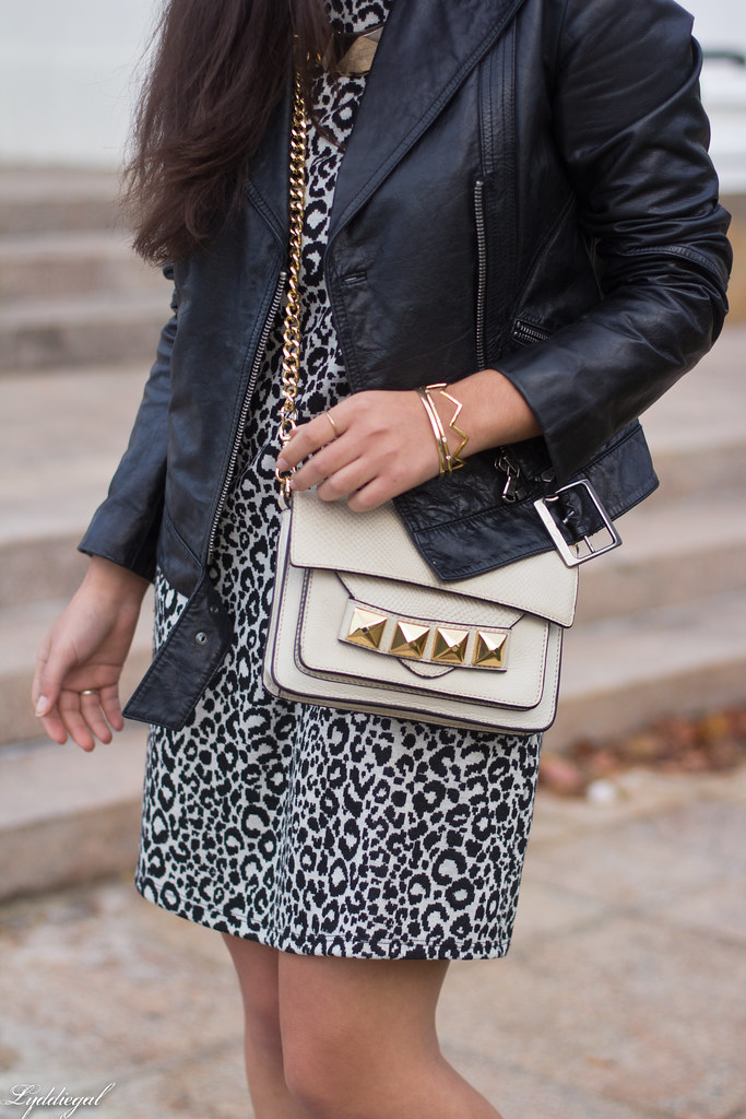 leopard dress, leather moto jacket, studded bag-6.jpg