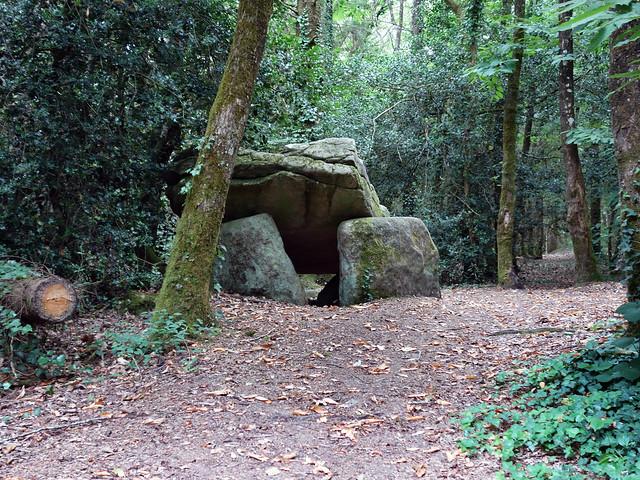 Le dolmen de Ménez-Liaven près de Pluguffan - Finistère - Juillet 2015 - 02