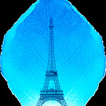graphic depicting a leaf with the silhouette of the Eiffel tower