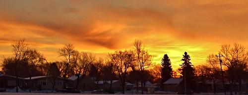city trees winter light urban cloud canada tree cars car clouds sunrise dawn colorful december edmonton earlymorning alberta nwn dec82014