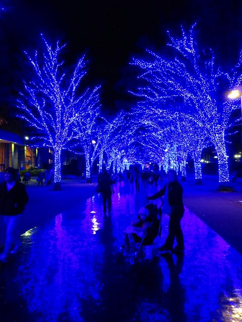 Blue Lights at Yoyogi, Canon POWERSHOT ELPH 330 HS