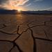 Mud Cracks and Sun Stars by Michael Bandy