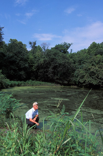 USDA agricultural engineer Jim Fouss observing an algal bloom on Alligator Bayou, near Baton Rouge, Louisiana