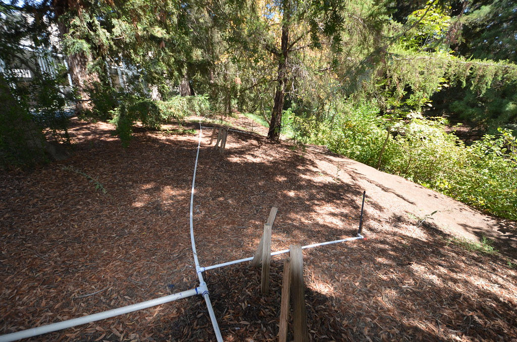 Temporary irrigation in the North Coast Collection