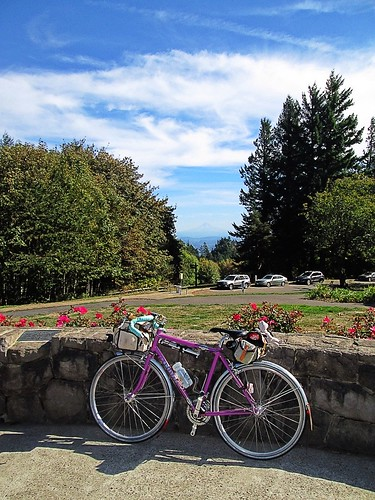 Sweetpea and Mt Hood at the Council Crest summit