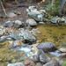 Hancock Notch Trail Brook 1