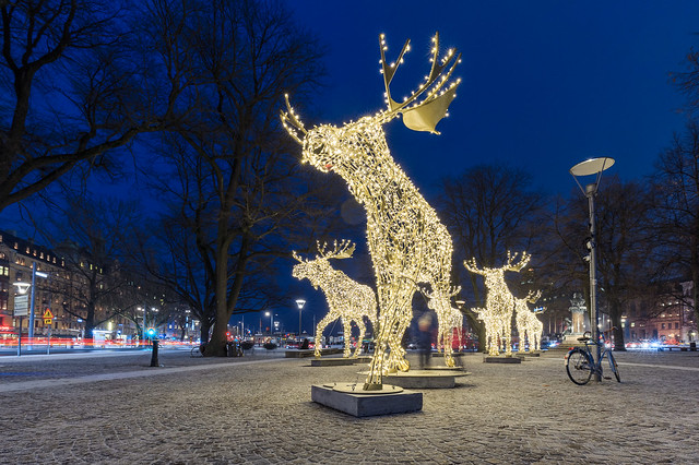 When Stockholm gets dark and diffuse - we light up some moose
