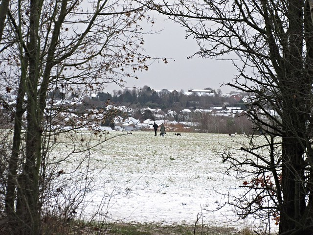 Rayleigh, Essex, Canon IXUS 275 HS