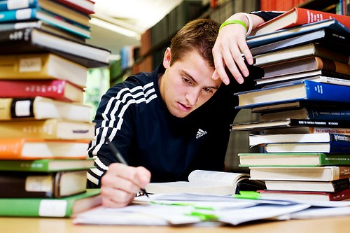 Dissertation Writing Service Reviews to Keep Your Head Up.