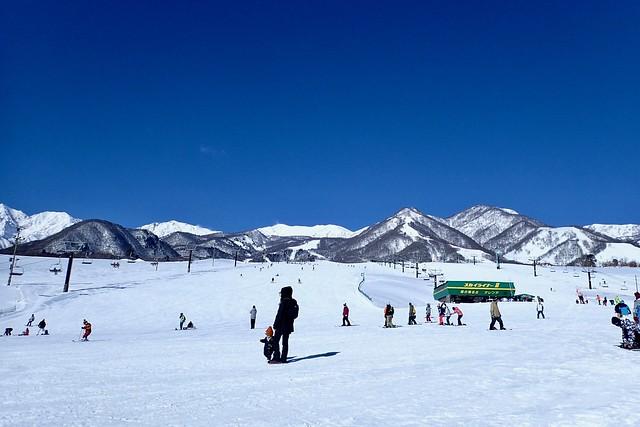2017.2.4 栂池高原スキー場