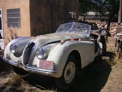 automobile, jaguar xk120, jaguar xk140, vehicle, antique car, classic car, vintage car, land vehicle, luxury vehicle, convertible,