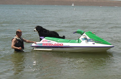 dinghy(0.0), skiff(0.0), f1 powerboat racing(0.0), watercraft rowing(0.0), motorsport(0.0), inflatable boat(0.0), vehicle(1.0), sports(1.0), boating(1.0), motorboat(1.0), jet ski(1.0), personal water craft(1.0), watercraft(1.0), boat(1.0),