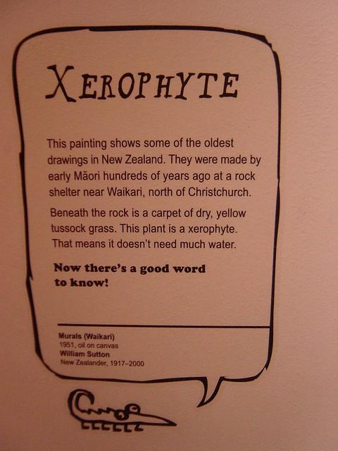Header of xerophyte