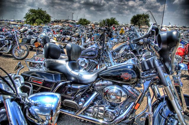 Harleys to the Horizon