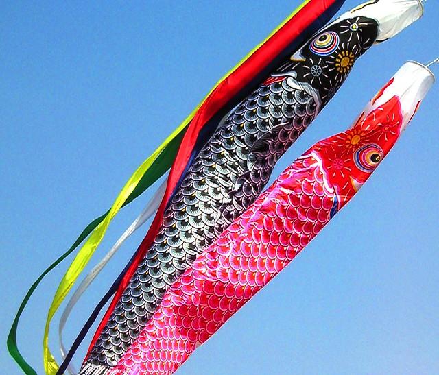 Koi carp flags flickr photo sharing for Japanese flag koi