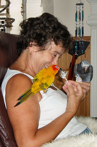 Birdie Joy!  FEATHERY FRIDAY START Birdies!!!