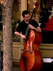 bowed string instrument(0.0), violinist(0.0), bassist(0.0), violin(0.0), viol(0.0), viola(0.0), fiddle(0.0), cello(0.0), bass guitar(0.0), classical music(1.0), string instrument(1.0), musician(1.0), double bass(1.0), string instrument(1.0),