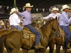 pack animal(0.0), reining(0.0), animal sports(1.0), rodeo(1.0), western riding(1.0), equestrian sport(1.0), sports(1.0), charreada(1.0), horse harness(1.0), jockey(1.0), barrel racing(1.0), cowboy(1.0),