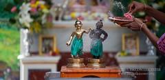 Balarama Jayatni - 20150829_10072