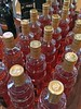 Summer in a Bottle by AntyDiluvian