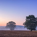 A New Day Dawns by jactoll