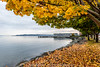 Fall-Leaves-Waterfront-10-9-2015-5119 by Rob Green - SmokingPit.com